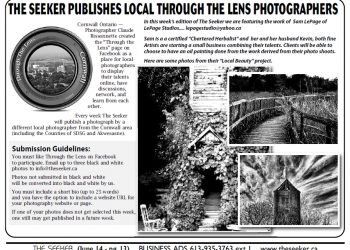 Through the Lens June 14th 2013