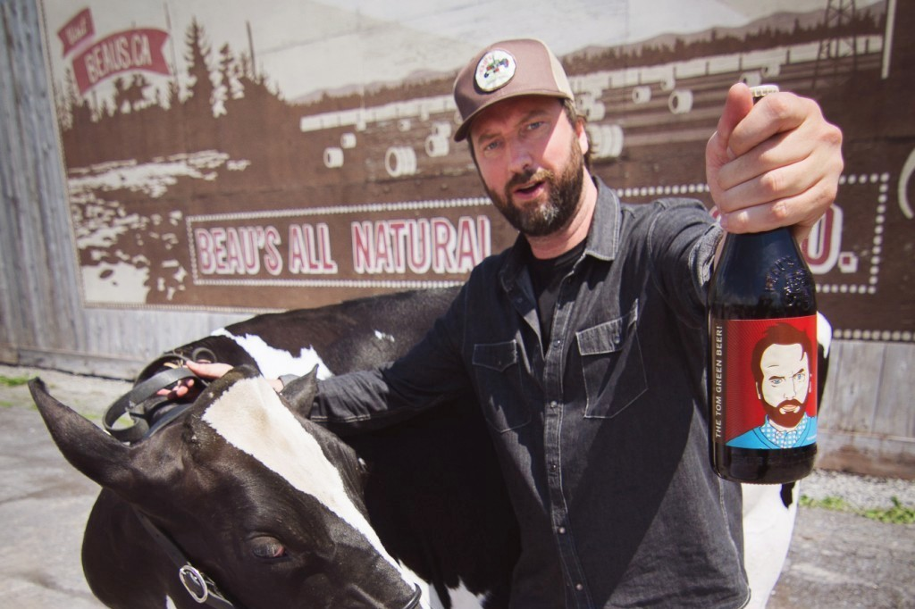 tomgreen-cow-beaus