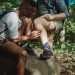 multiethnic friends searching for ticks while hiking